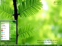游春韩国之济州岛桌面主题图1
