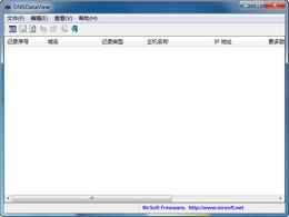 DNS解析记录查看器 DNSDataView 1.41图1